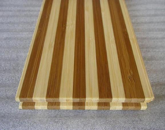 竹皮是竹壁最外层,通常横切面上看不见维管束的